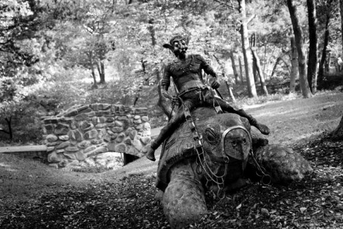 elf-riding-giant-tortoise
